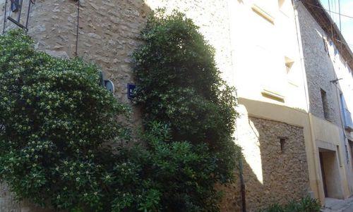 Immobilier sur Tourves : Appartement de 3 pieces