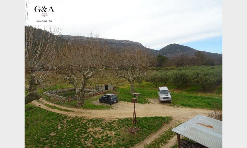 T3 environnement très calme - Vue Mont Aurelien : Photo 1