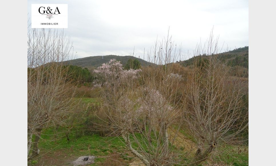T3 environnement très calme - Vue Mont Aurelien : Photo 6